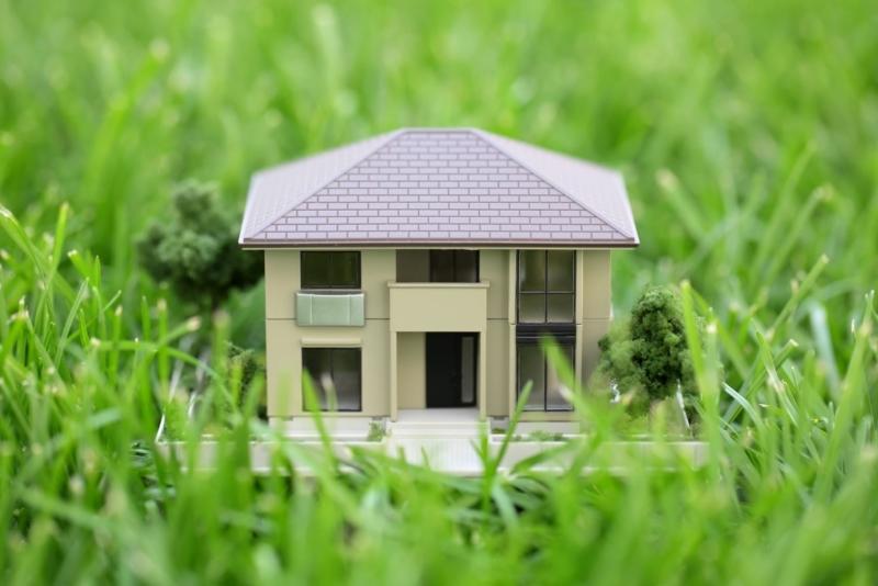 Приватизация земельного участка без строений
